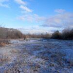 leddys pond winter